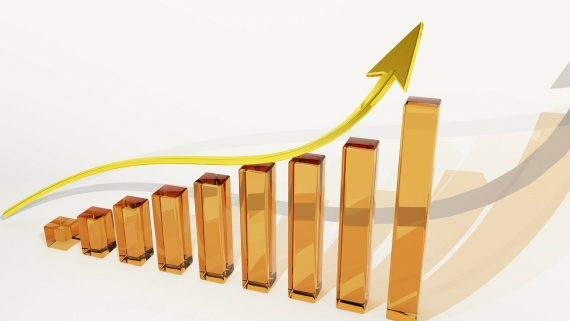 growth chart - niche investing